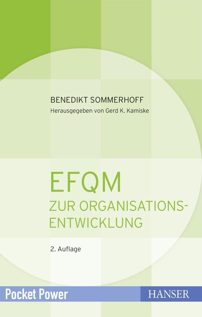 EFQM zur Organisationsentwicklung als eBook epub
