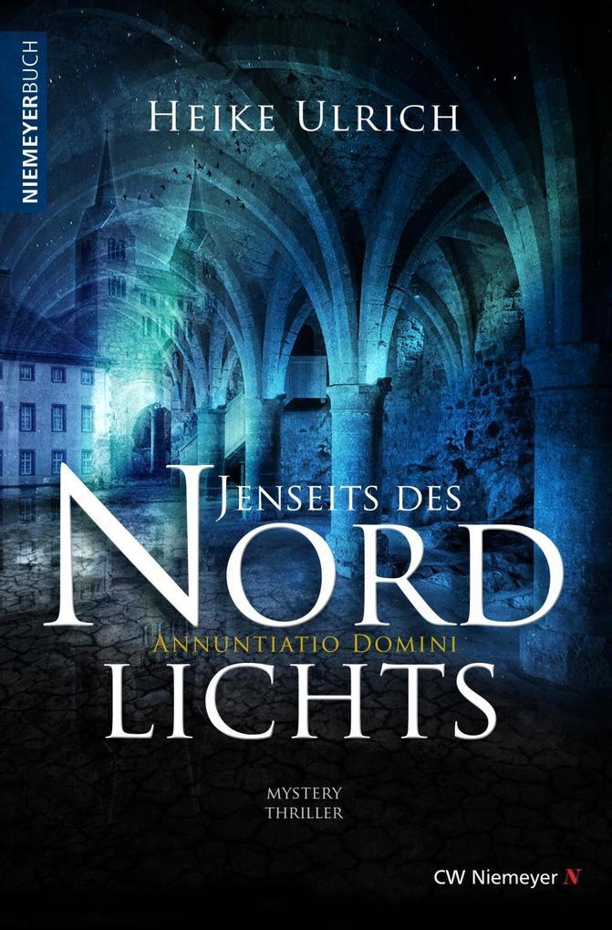 Jenseits des Nordlichts als eBook