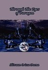 Through the Eyes of Paragon