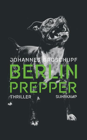 Berlin Prepper als Buch