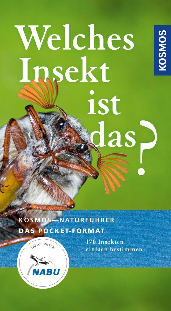 Welches Insekt ist das? als eBook