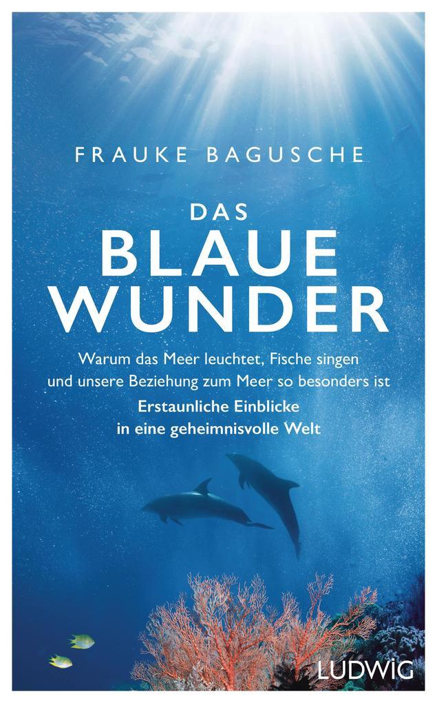 Das blaue Wunder als Buch