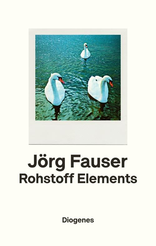 Rohstoff Elements als eBook