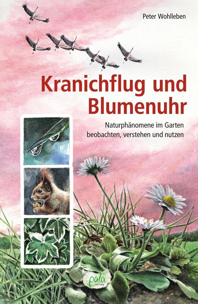 Kranichflug und Blumenuhr als Buch (gebunden)