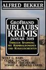 Großband Urlaubskrimis Januar 2019