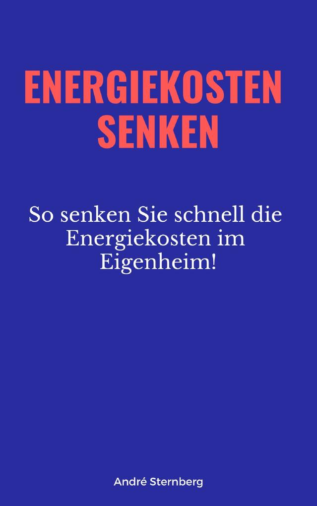 Energiekosten senken als eBook