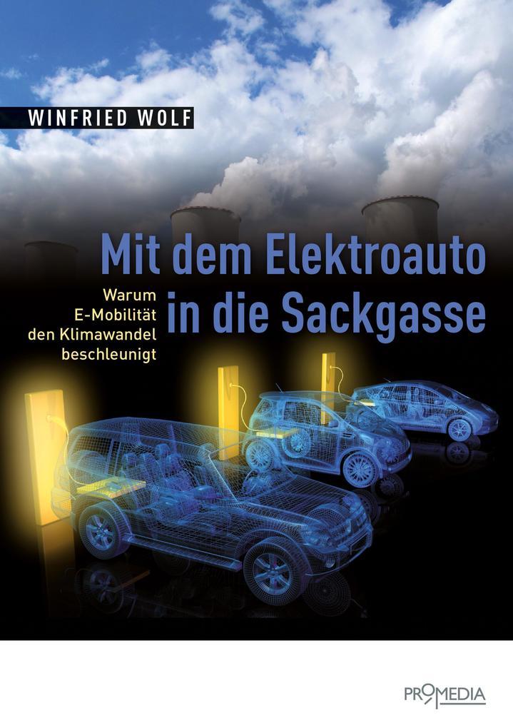 Mit dem Elektroauto in die Sackgasse als eBook