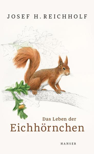 Das Leben der Eichhörnchen als Buch (gebunden)