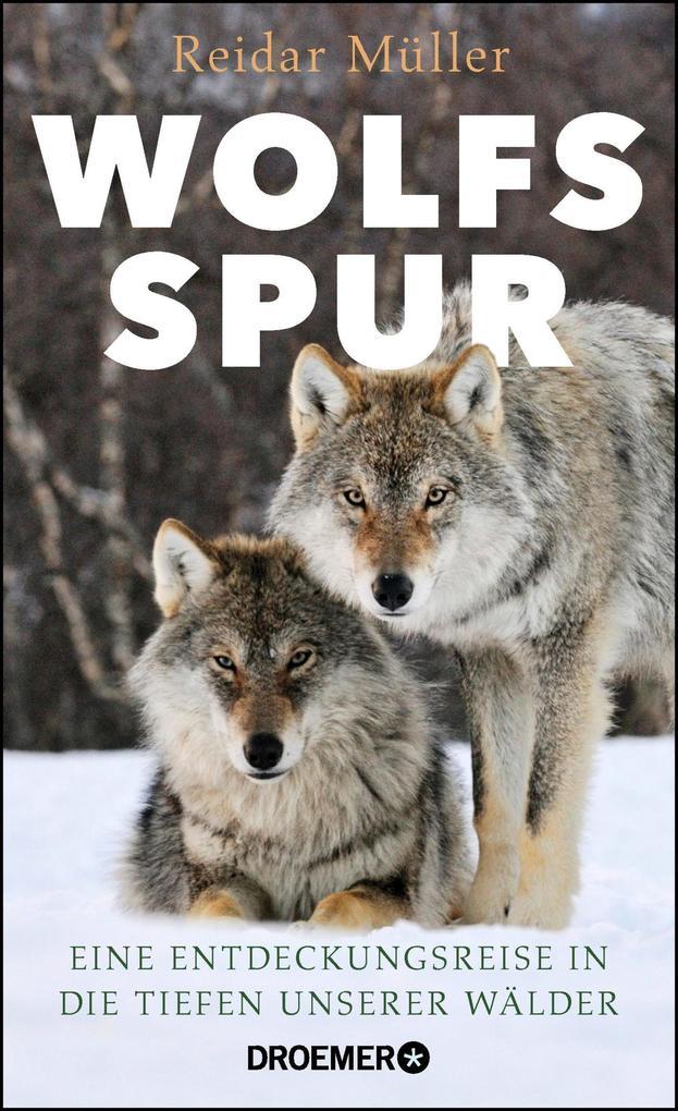 Wolfsspur als Buch