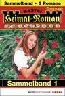Heimat-Roman Treueband 1 - Sammelband