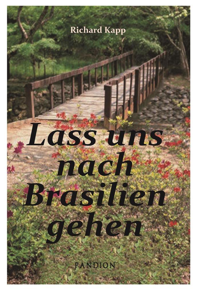 Lass uns nach Brasilien gehen: Auswanderer-Roman als eBook epub