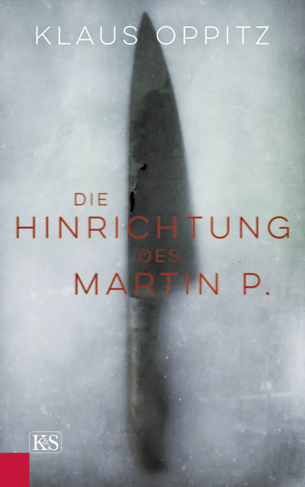 Die Hinrichtung des Martin P. als Buch (gebunden)
