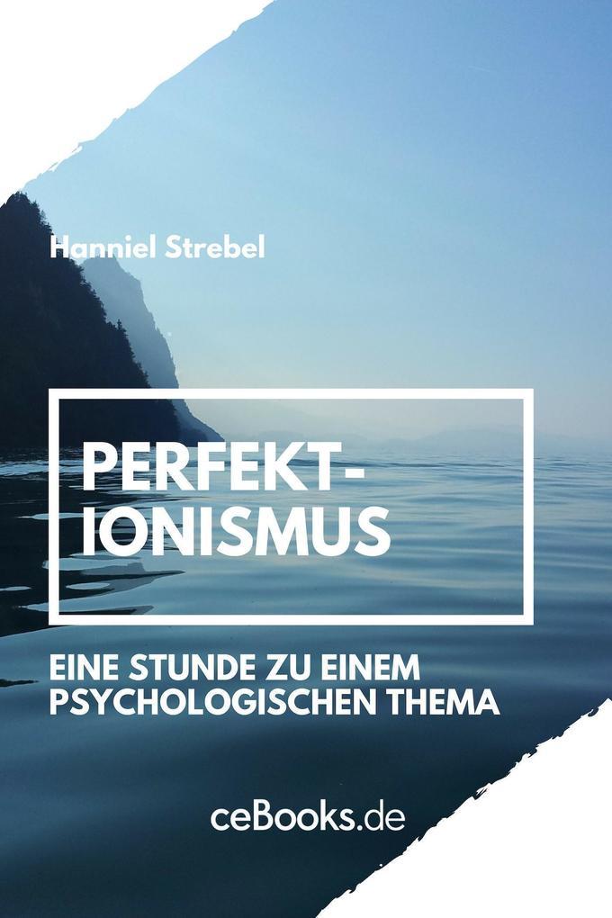 Perfektionismus als eBook