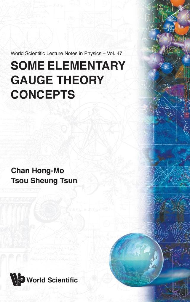 Some Elementary Gauge Theory Concepts als Buch