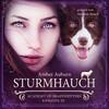 Sturmhauch, Episode 20 - Fantasy-Serie