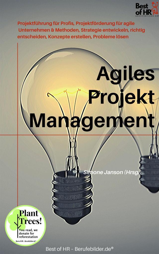 Agiles Projektmanagement als eBook epub