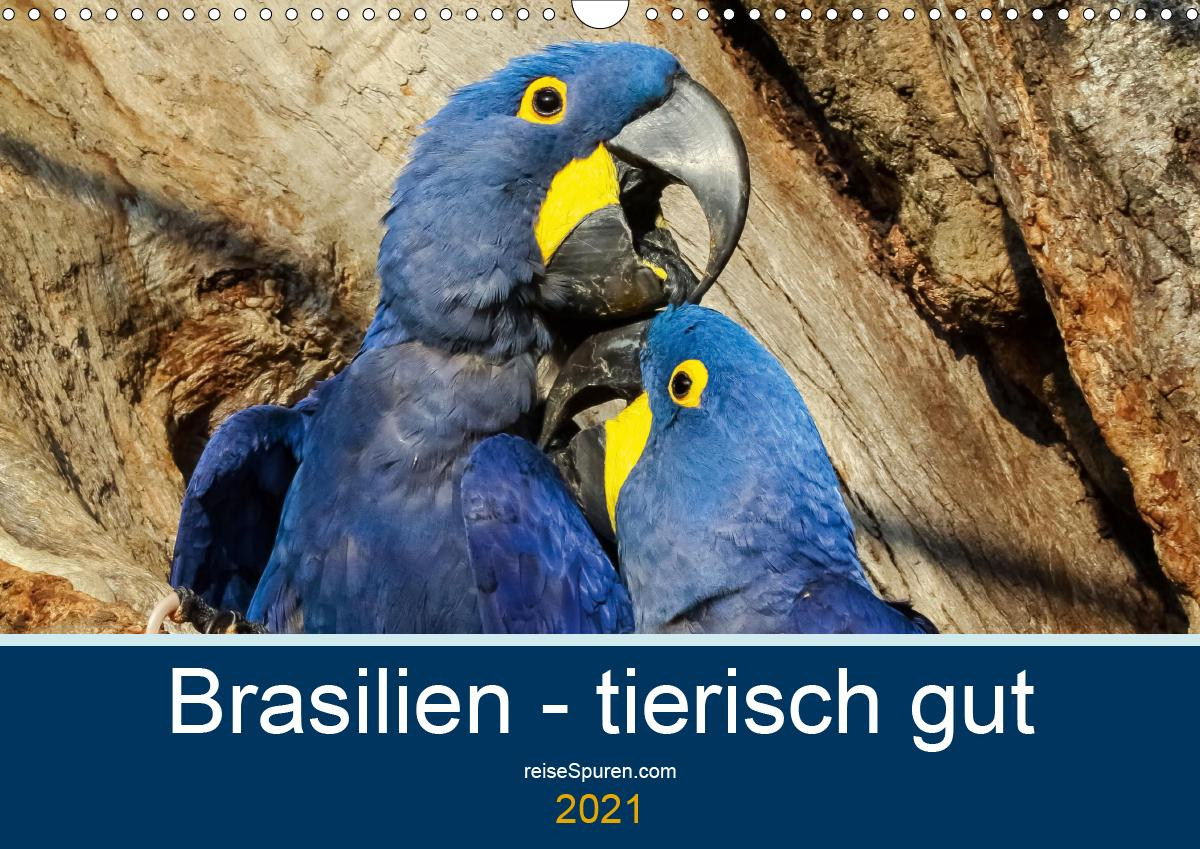 Brasilien tierisch gut 2021 (Wandkalender 2021 DIN A3 quer)