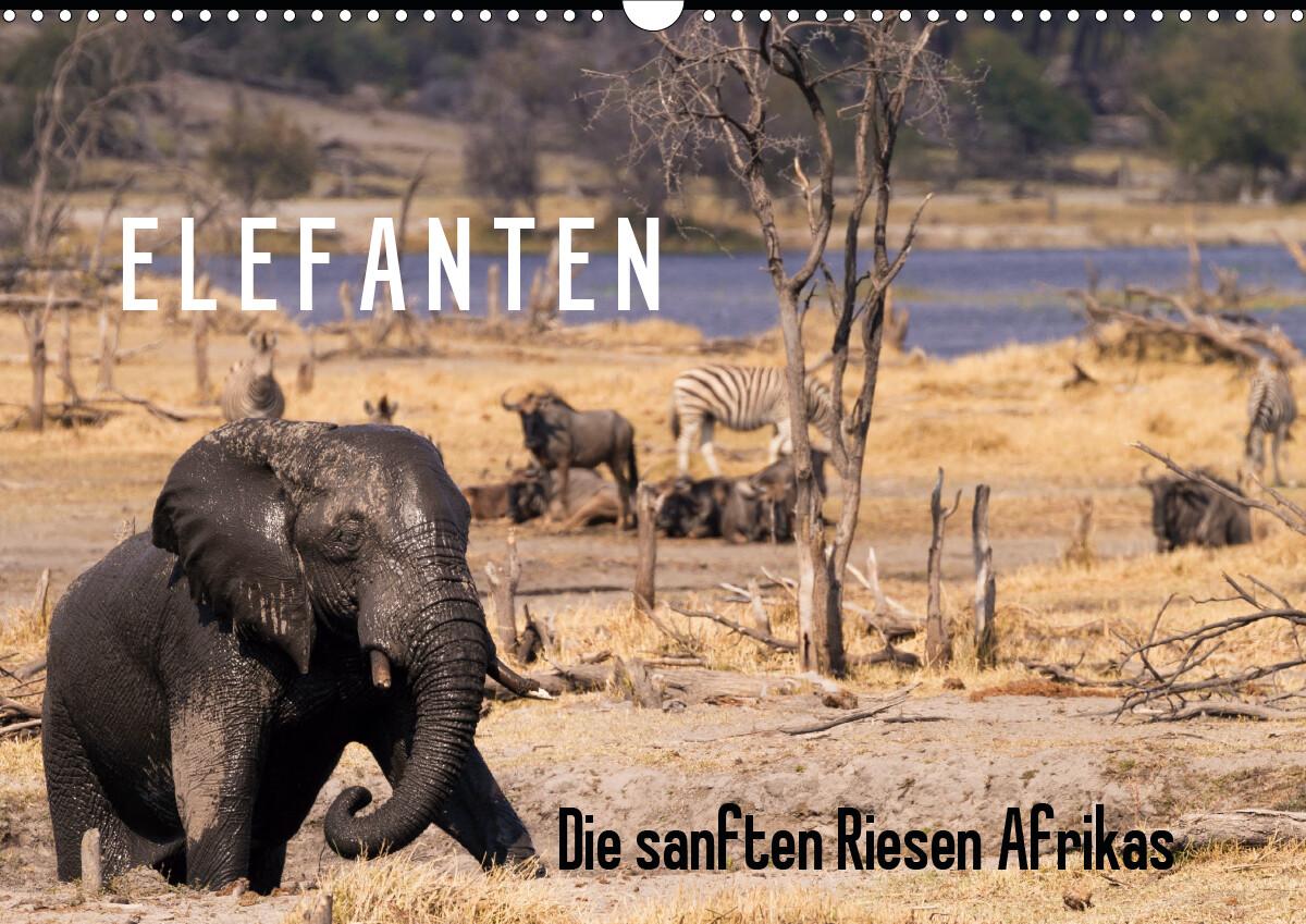 Elefanten - Die sanften Riesen Afrikas (Wandkalender 2021 DIN A3 quer)