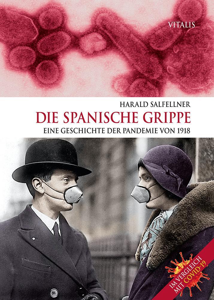 Die Spanische Grippe als Buch (gebunden)