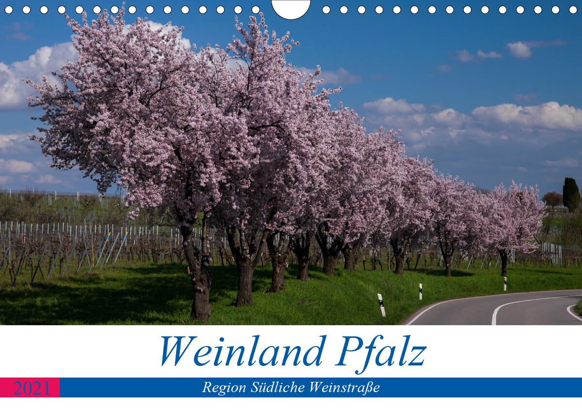 Weinland Pfalz - Region Südliche Weinstraße (Wandkalender 2021 DIN A4 quer)