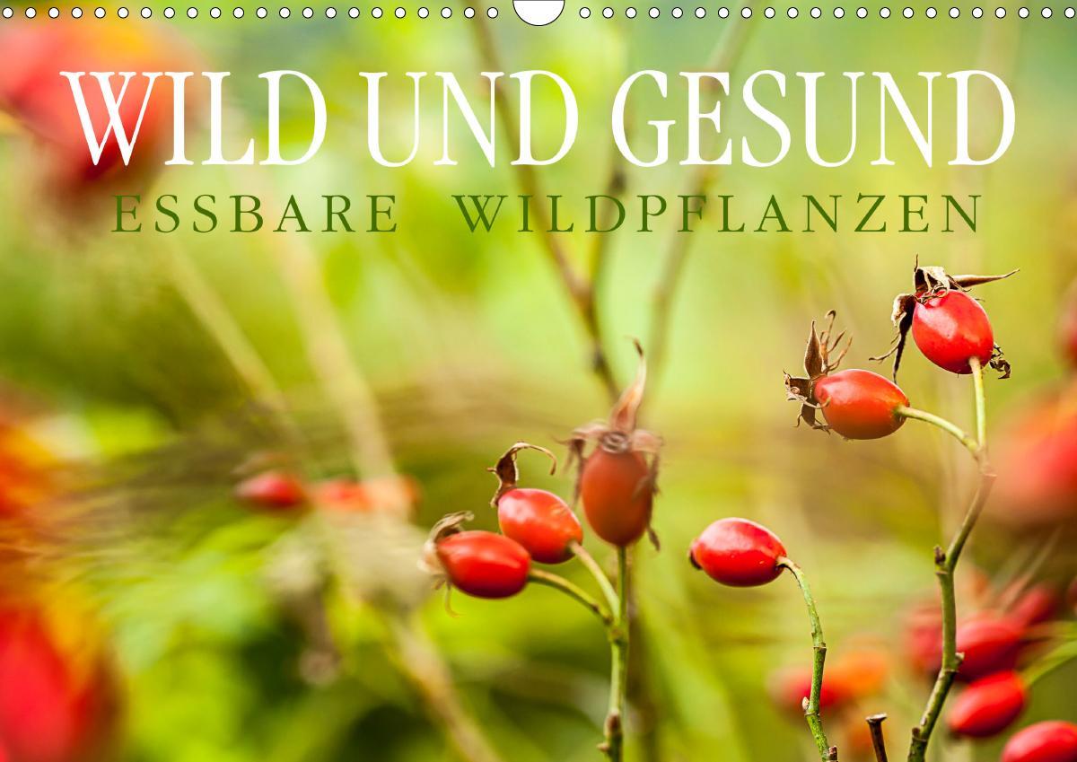 WILD UND GESUND Essbare Wildpflanzen (Wandkalender 2021 DIN A3 quer)