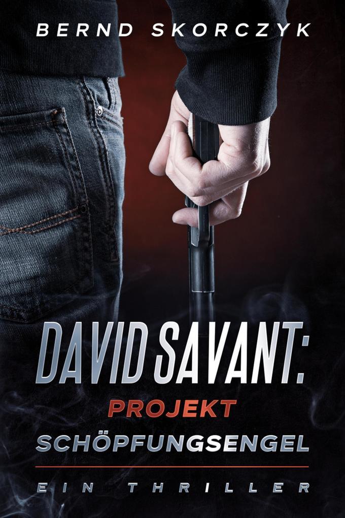 David Savant: Projekt Schöpfungsengel als eBook epub