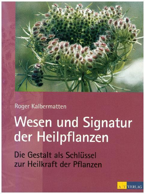 Wesen und Signatur der Heilpflanzen als Buch von Roger Kalbermatten
