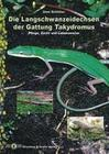Die Langschwanzeidechsen der Gattung Takydromus