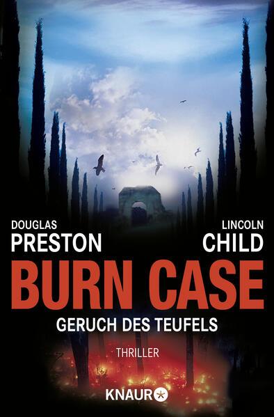 Burn Case als Taschenbuch
