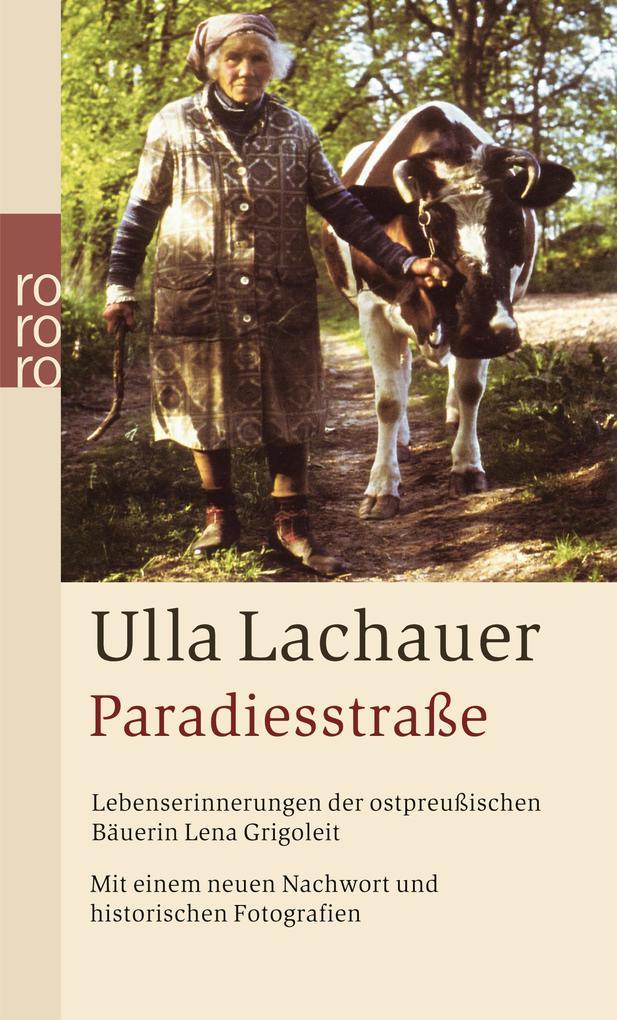 Paradiesstraße als Taschenbuch