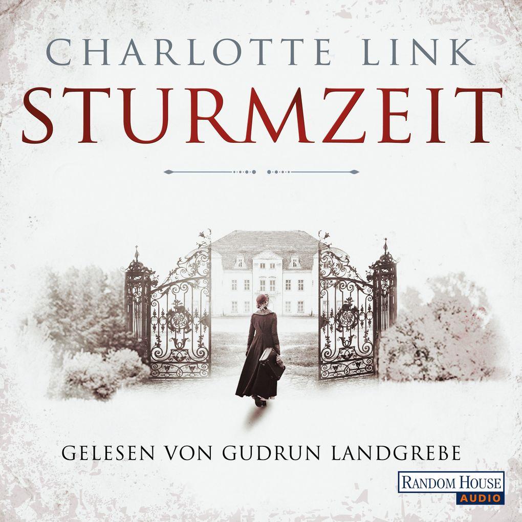 Sturmzeit Bd. 1 als Hörbuch Download