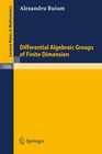 Differential Algebraic Groups of Finite Dimension