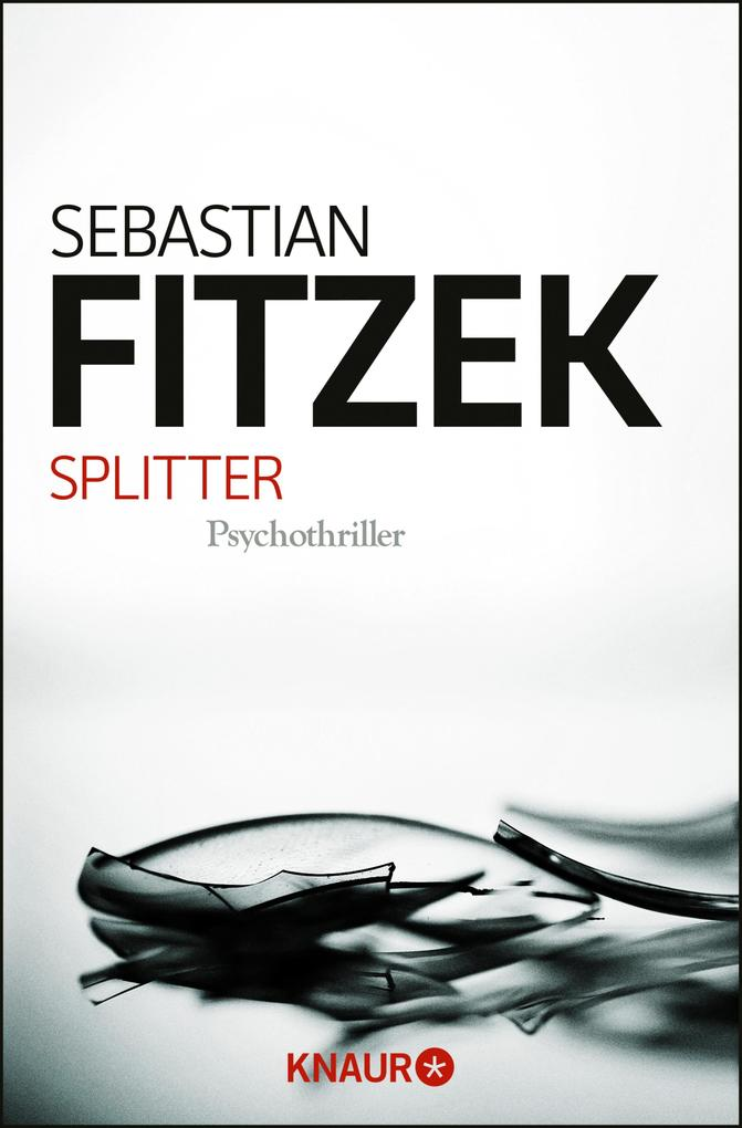 Splitter als eBook