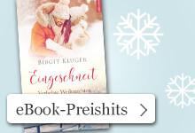 Weihnachtliche Preishits bei eBook.de