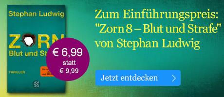 Zum Einführungspreis: Zorn 8 - Blut und Strafe von Stephan Ludwig bei eBook.de